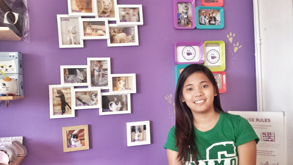 Happy Hour: Cat Cafe MNL