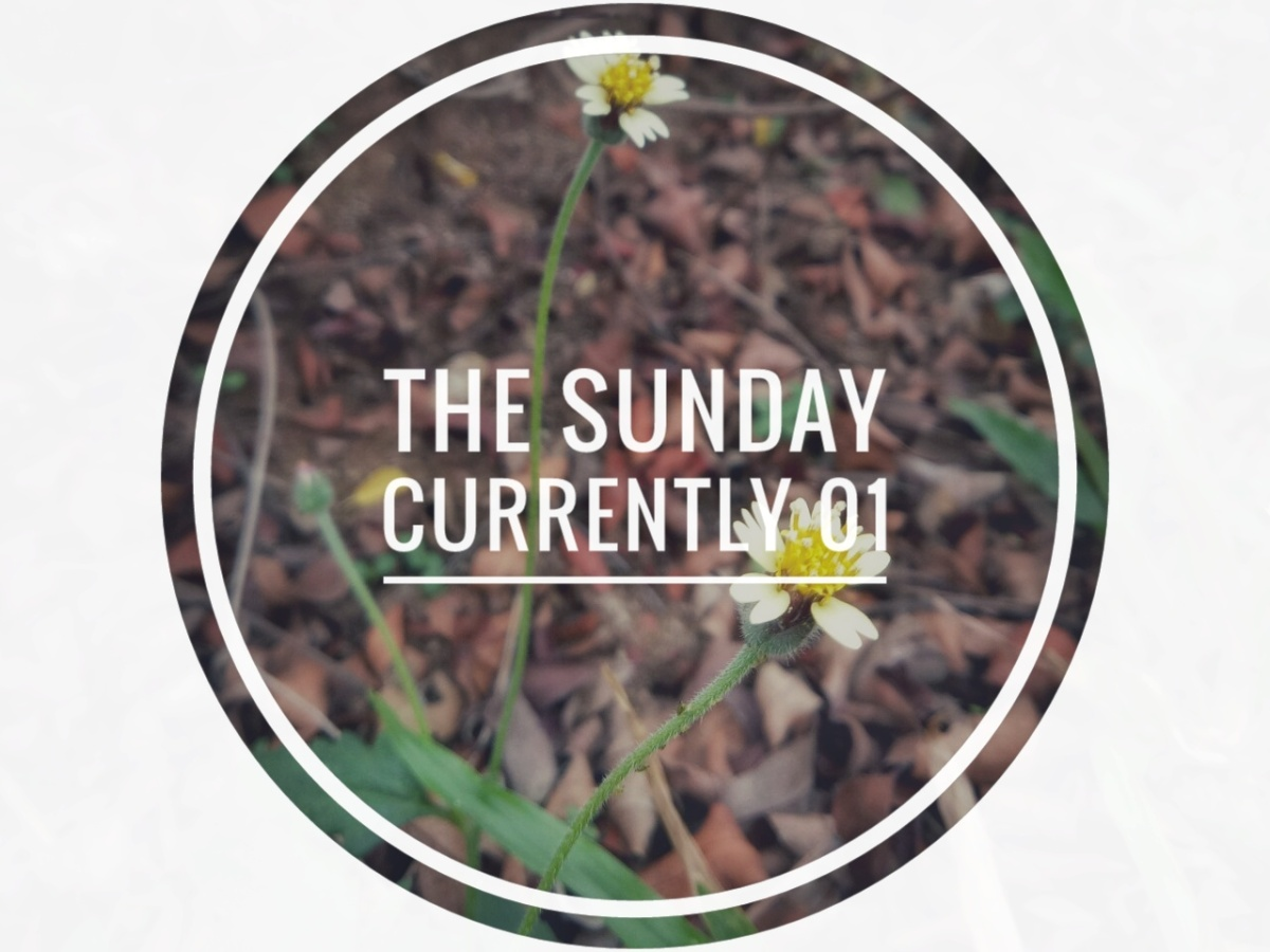 The Sunday Currently Vol.1